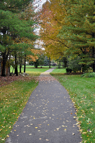 Walking/bike path in Muirfield Village