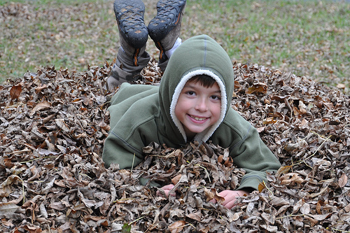 Carson in a pile of leaves