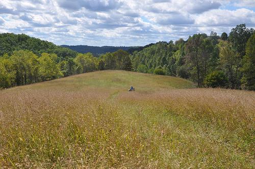 Following Benton Through a Field to the High Point