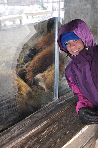 Julie and Two Brown Bears