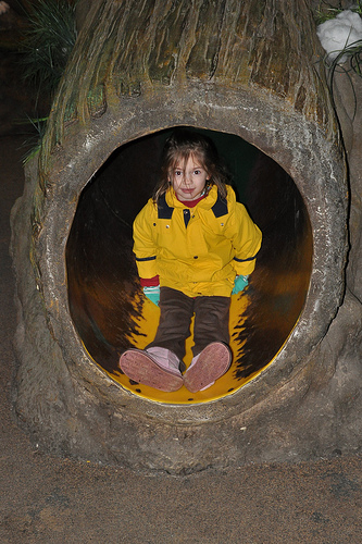 """In the tree trunk slide in """"My House"""""""